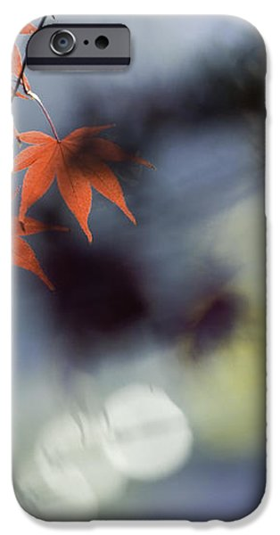 Autumn Red  iPhone Case by Rob Travis