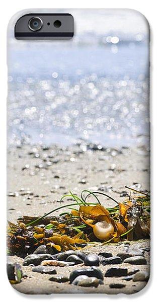 Beach detail on Pacific ocean coast iPhone Case by Elena Elisseeva