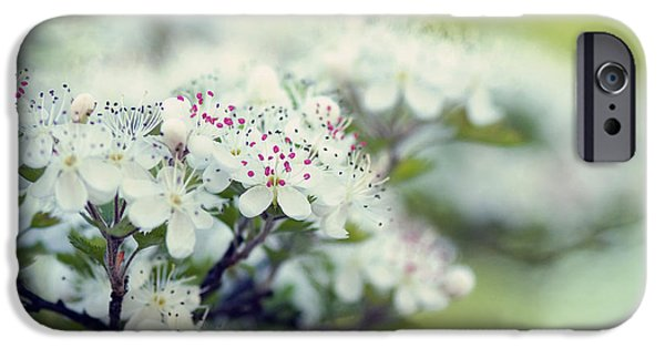 Blossom iPhone Cases - Blossom iPhone Case by Joel Olives
