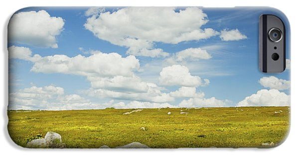 Blueberries iPhone Cases - Blue Sky And Clouds Over Blueberry Farm Field Maine iPhone Case by Keith Webber Jr