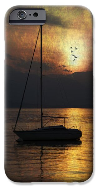 boat in sunset iPhone Case by Joana Kruse