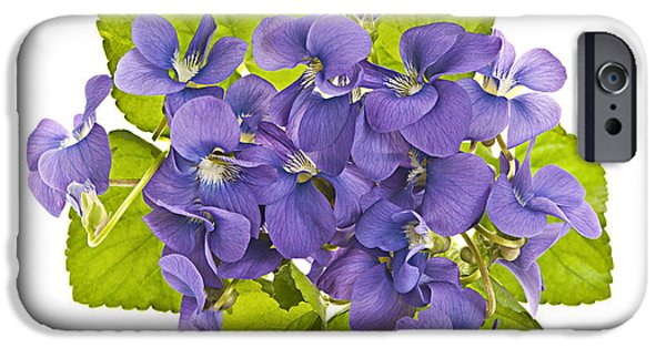 Botanical Photographs iPhone Cases - Bouquet of violets iPhone Case by Elena Elisseeva