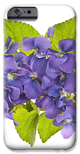 Bouquet of violets iPhone Case by Elena Elisseeva