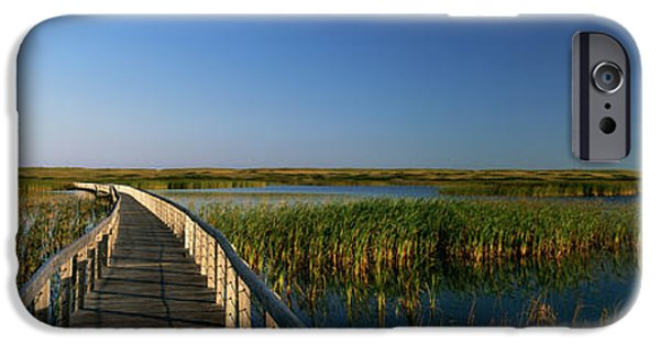 Pathway iPhone Cases - Bowley Pond Boardwalk, Kings County iPhone Case by Ron Watts