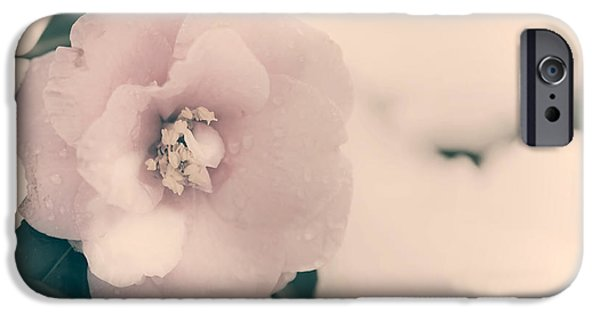 Wet Petals iPhone Cases - Camellia iPhone Case by Joana Kruse
