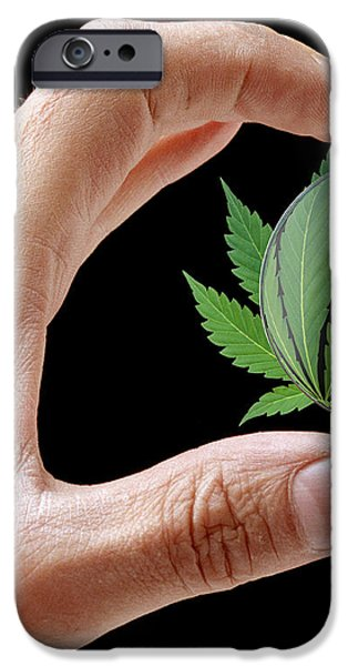 Cannabis Research iPhone Case by Victor De Schwanberg