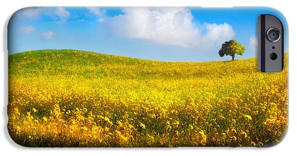 Canola Field iPhone Cases - Canola Field With Tree iPhone Case by Mal Bray