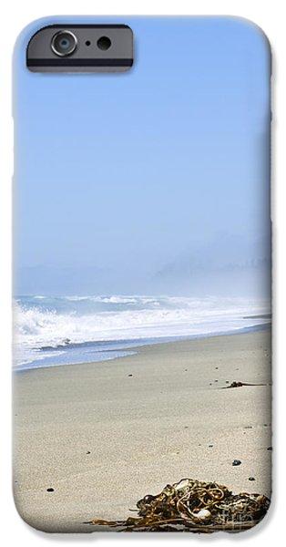 Seaweed iPhone Cases - Coast of Pacific ocean in Canada iPhone Case by Elena Elisseeva