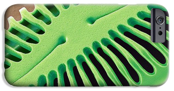 Pinnularia Sp iPhone Cases - Diatom Frustule, Sem iPhone Case by Steve Gschmeissner
