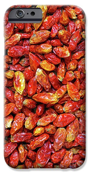 Chili iPhone Cases - Dried Chili Peppers iPhone Case by Carlos Caetano