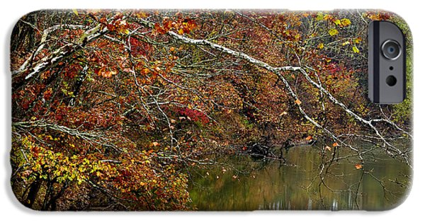 Tree. Sycamore iPhone Cases - Fall along West Fork River iPhone Case by Thomas R Fletcher
