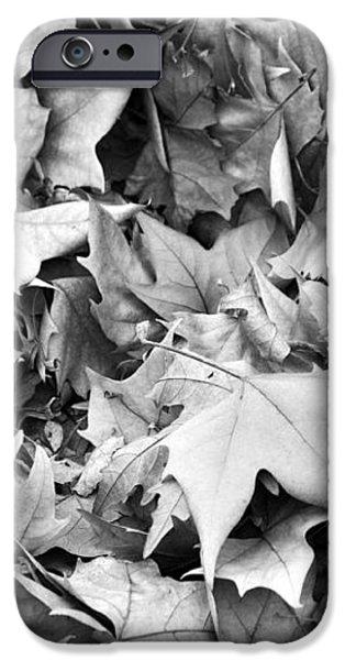 Fallen leaves iPhone Case by Fabrizio Troiani