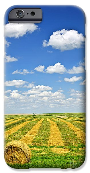 Crops iPhone Cases - Farm field at harvest in Saskatchewan iPhone Case by Elena Elisseeva