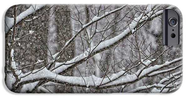 Winter Storm iPhone Cases - February Snowstorm iPhone Case by JAMART Photography