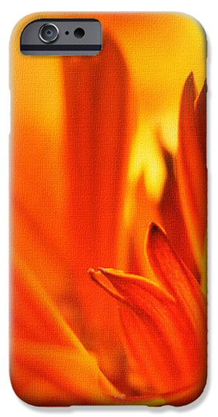 Fire Storm  iPhone Case by Elaine Manley