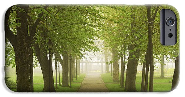 Green iPhone Cases - Foggy park iPhone Case by Elena Elisseeva