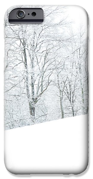 Frigid iPhone Cases - Frosted Trees and Pasture Field iPhone Case by Thomas R Fletcher