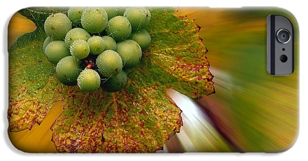 Creative Manipulation iPhone Cases - Grapes iPhone Case by Jean Noren