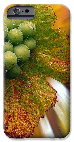 grapes iPhone Case by Jean Noren