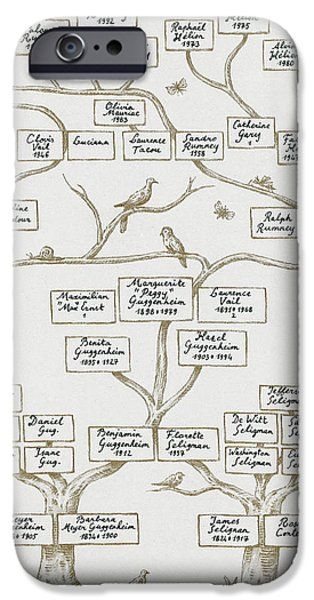 Guggenheim Family Tree iPhone Case by Science Source