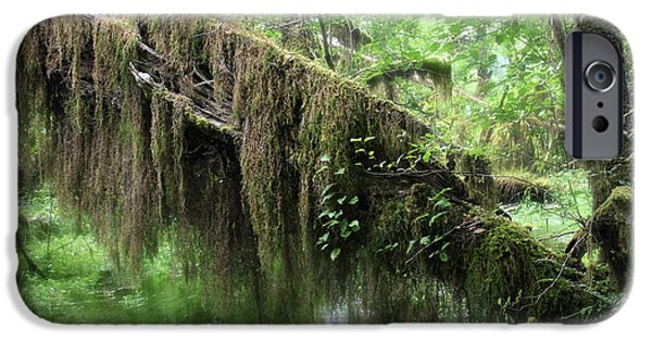 Tendrils iPhone Cases - Hall of Mosses - Hoh Rain Forest Olympic National Park WA USA iPhone Case by Christine Till