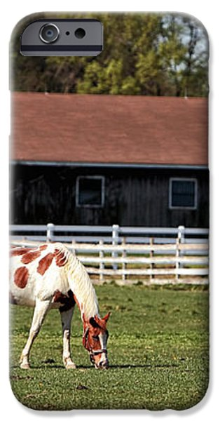 Horse iPhone Case by John Rizzuto