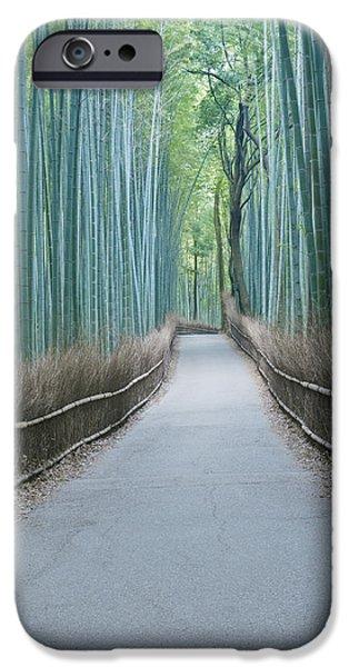 Japan Kyoto Arashiyama Sagano Bamboo iPhone Case by Rob Tilley
