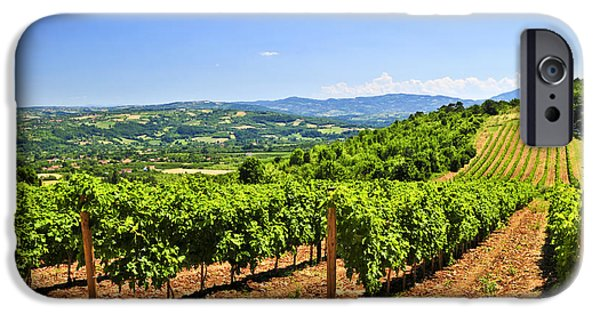Fields iPhone Cases - Landscape with vineyard iPhone Case by Elena Elisseeva