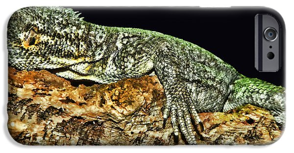 Iguana iPhone Cases - Let Me Strike A Pose iPhone Case by Lourry Legarde