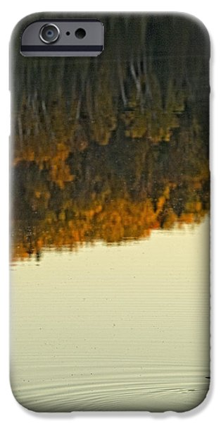 Loon In Opeongo Lake With Reflection iPhone Case by Robert Postma