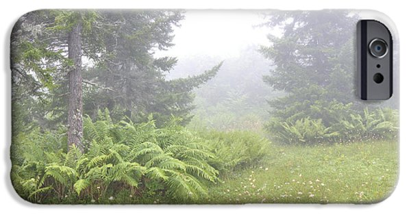 Fog Mist iPhone Cases - Misty Morning Cranberry Glades iPhone Case by Thomas R Fletcher