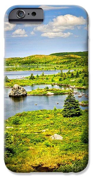 Newfoundland landscape iPhone Case by Elena Elisseeva