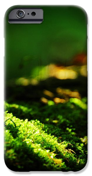 Dappled Light Photographs iPhone Cases - One Hundred Ways iPhone Case by Rebecca Sherman