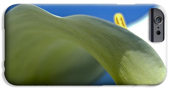 Calla Lilly iPhone Cases - Open white calla lily I iPhone Case by Heiko Koehrer-Wagner