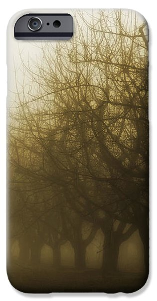 Orchard in Fog iPhone Case by Rebecca Cozart