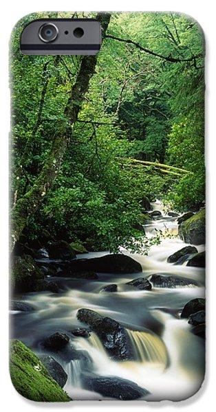 Cummins iPhone Cases - Owengarriff River, Killarney National iPhone Case by Richard Cummins