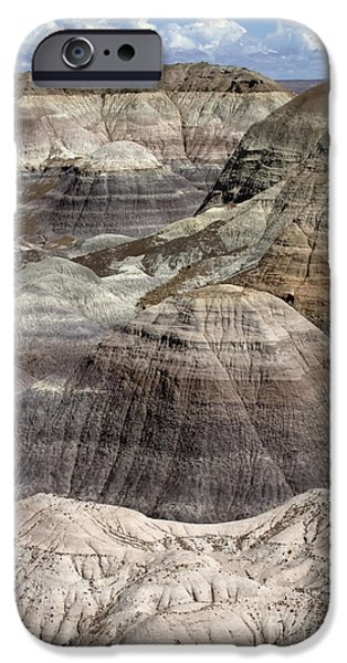 Petrified Forest Arizona iPhone Cases - Petrified Forest Landscape 3 iPhone Case by Bob Christopher