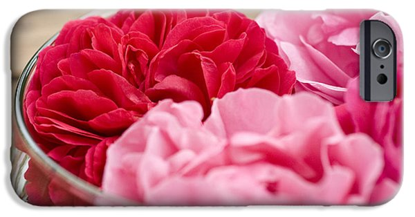 Pinky iPhone Cases - Pink Roses iPhone Case by Frank Tschakert