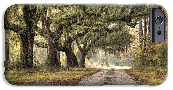 Live Oaks iPhone Cases - Plantation Drive Live Oaks  iPhone Case by Dustin K Ryan