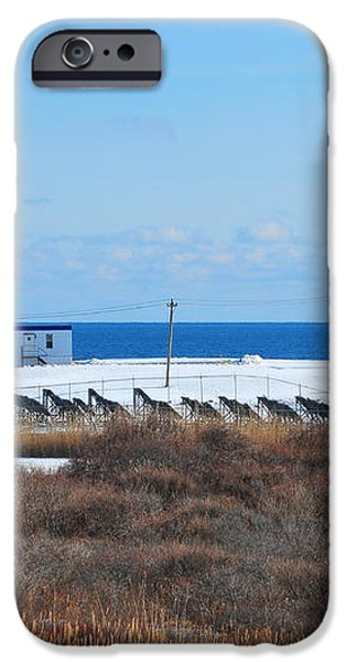 Point Judith Light iPhone Case by Catherine Reusch  Daley