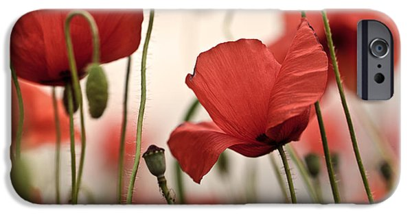 Petals iPhone Cases - Poppy Flowers 04 iPhone Case by Nailia Schwarz