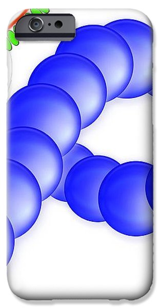 Protein Synthesis, Artwork iPhone Case by Gombert, Sigrid
