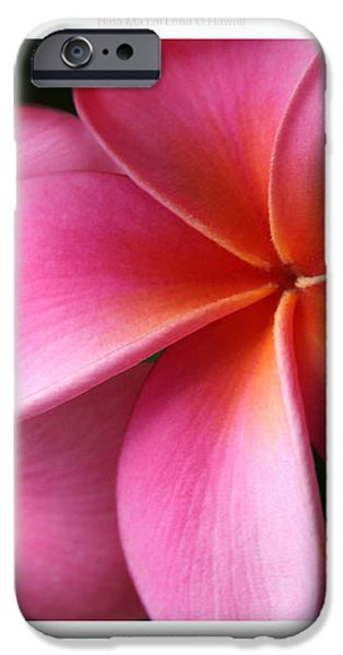Pua Lei Aloha Cherished Blossom Pink Tropical Plumeria Hina Ma Lai Lena O Hawaii iPhone Case by Sharon Mau