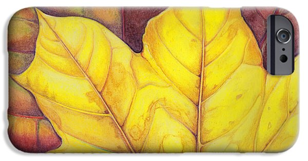 Fall Pastels iPhone Cases - Releaf iPhone Case by Amy Tyler