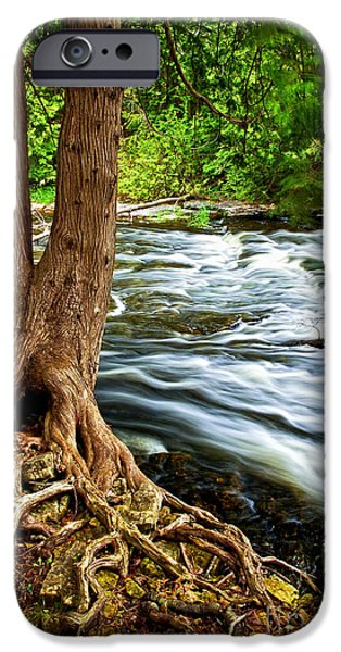 Creek iPhone Cases - River through woods iPhone Case by Elena Elisseeva