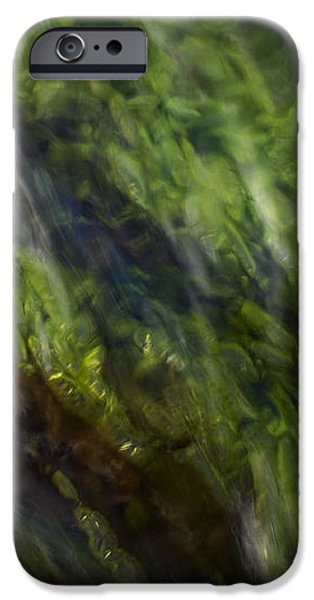Sea weed iPhone Case by Michael Mogensen