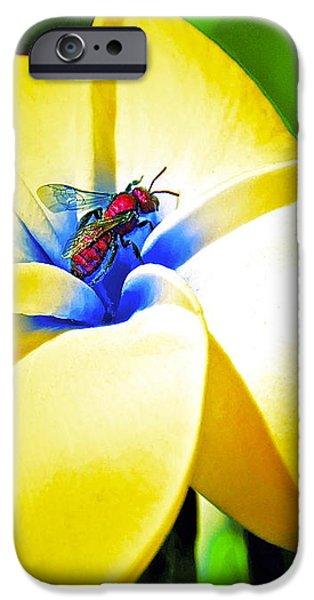 Secrets iPhone Case by Gwyn Newcombe
