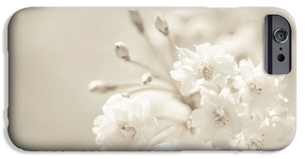 Sepia Flowers iPhone Cases - Sepia Sunshine iPhone Case by Robin Konarz