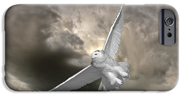 Flight iPhone Cases - Snowy Owl in Flight iPhone Case by Mark Duffy