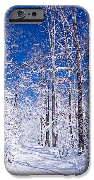 Snowy Path iPhone Case by Rob Travis